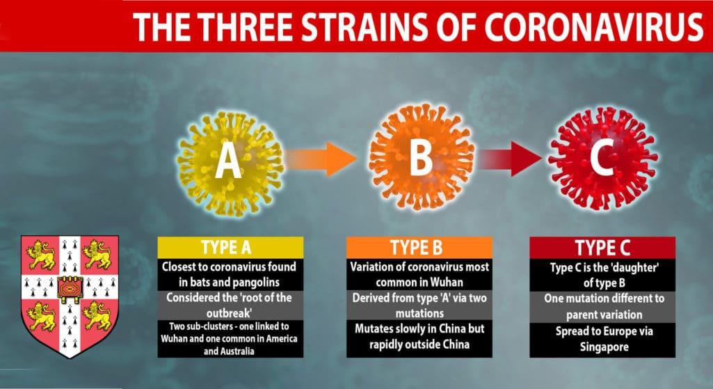 Cambridge: Τρία τα διακριτά στελέχη του νέου κορωνοϊού στον πλανήτη